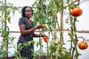 Mkulima Young: Farming in Kenya becomes sexy